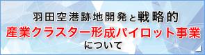 羽田空港跡地開発と戦略的産業クラスター形成パイロット事業について